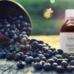 Elixir de Myrtilles | Complément alimentaire acuité visuelle